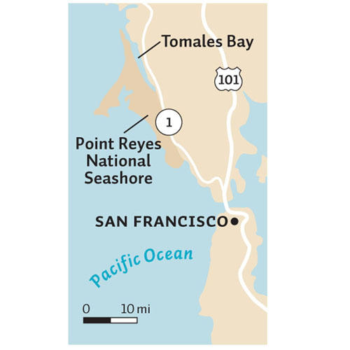 Map of the Bay Area, pointing out Tomales Bay and Point Reyes.