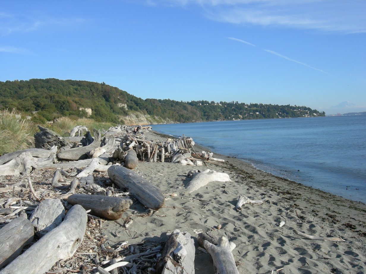 beach at Discovery Park loop trail, Seattle
