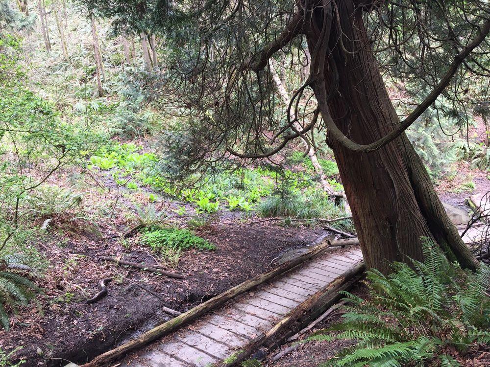 Frink Park, Seattle, walking trail